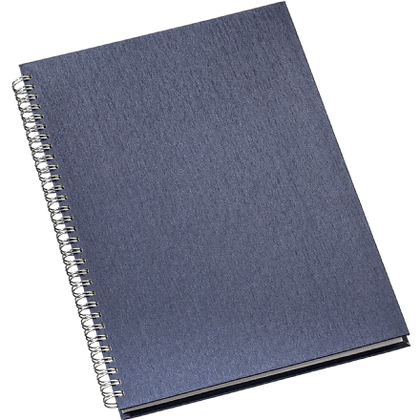 301L - Caderno de Negócios