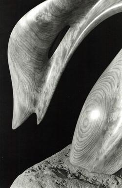 Ballet of Nature (detail)