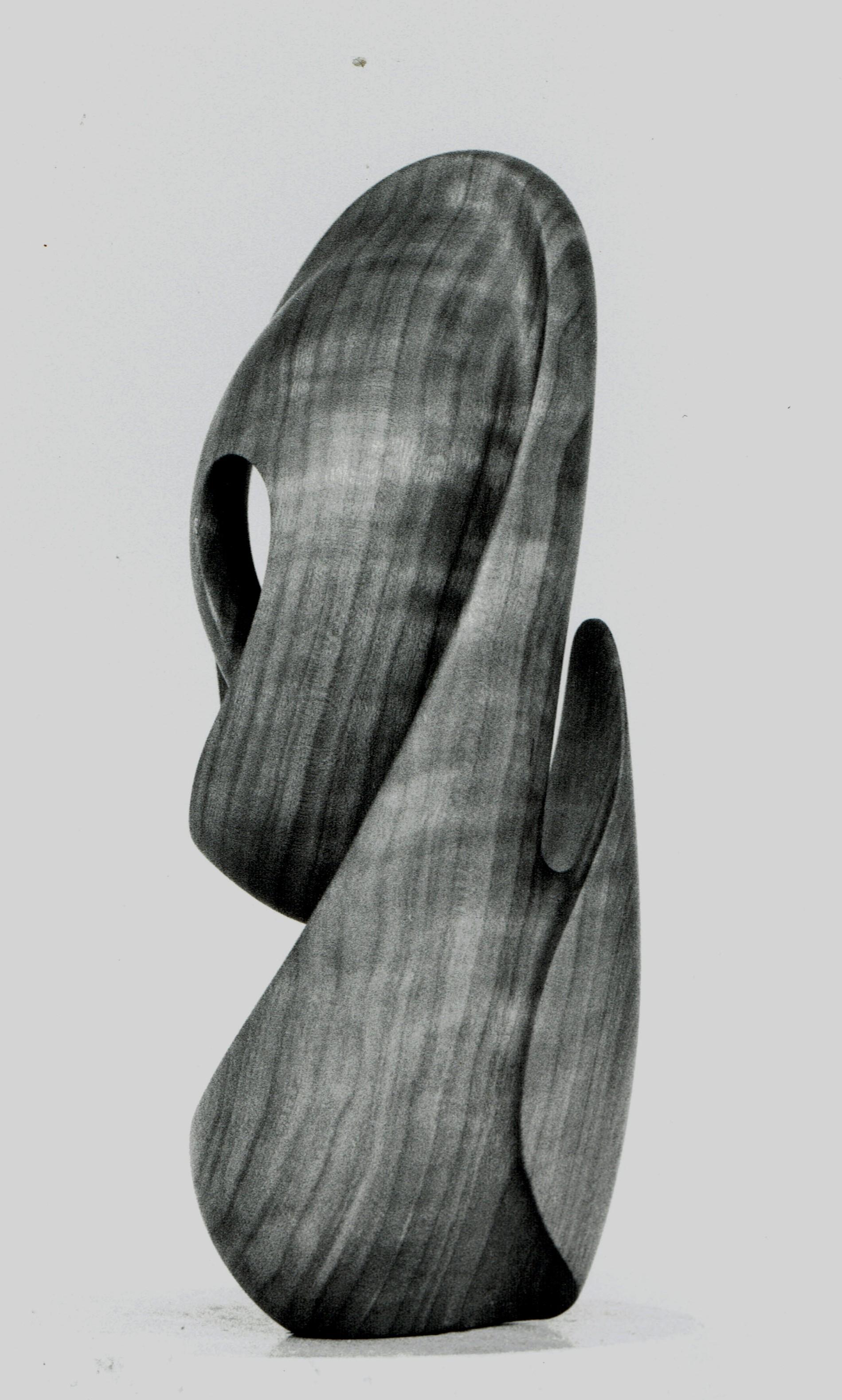 Skull (3rd view)