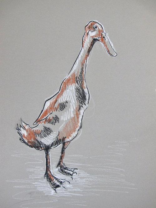 Runner duck I