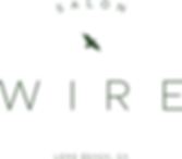 WIRE_logo_RND1-1.png