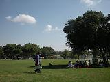 גדעון שריג,אדריכלות נוף,פארק לאומי רמת גן,פארק,התחדשות פארק לאומי רמת גן,לב וקסמן,פארק לאומי התחדשות