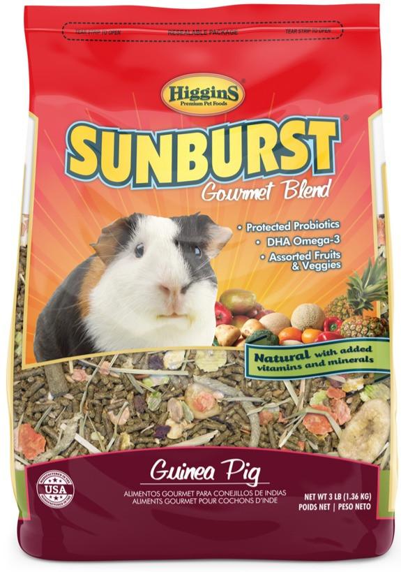 suburst gp_edited.jpg