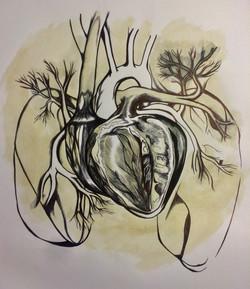 The Heart - KORANA URSIC