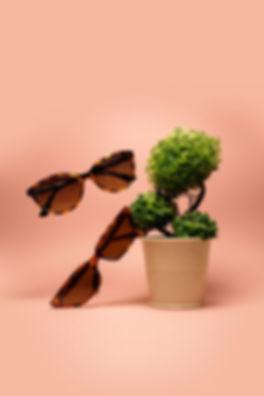 levitation photography  _edited.jpg