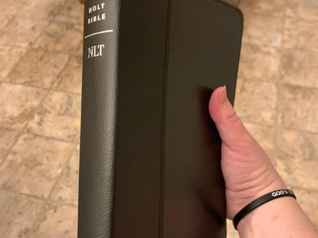 The Giant Print Filament Bible