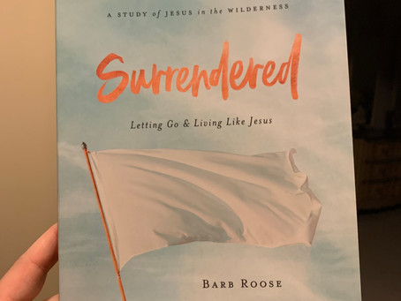 Guest Post-Barb Roose