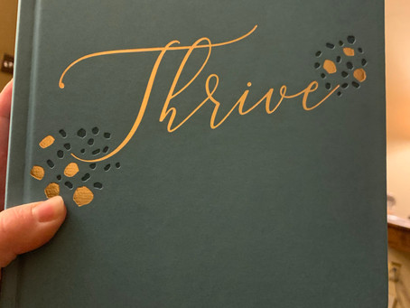 Thrive Creative Journaling Bible Review