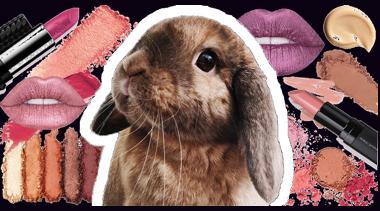 Cruelty Free Cosmetics Event