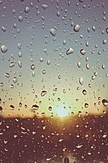 Rain-drops-water-window