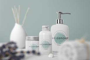 2020-12-17 Mockup skin concept.png