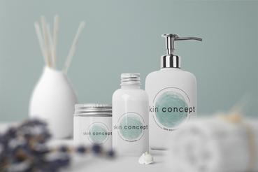 TS Mockup skin concept