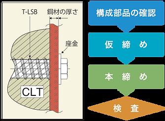 t-lsb_flow.png
