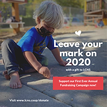 Leave Your Mark on 2020 - LCNS.png