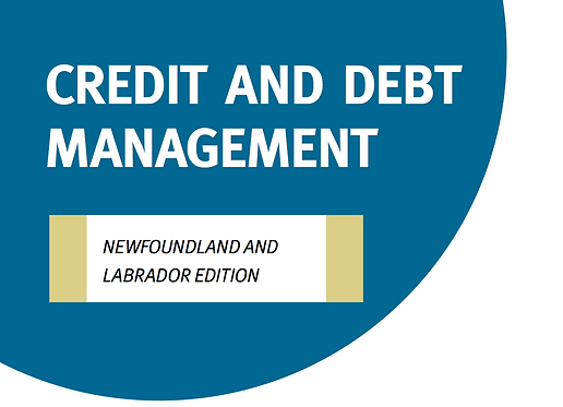 NL - Credit and Debt Management Tool