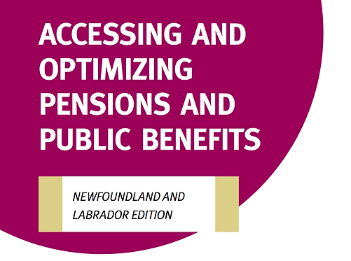 NL - Accessing and Optimizing Pensions and Public Benefits Tool