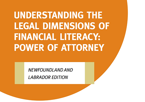 NL - The Legal Dimensions of Financial Literacy Tool
