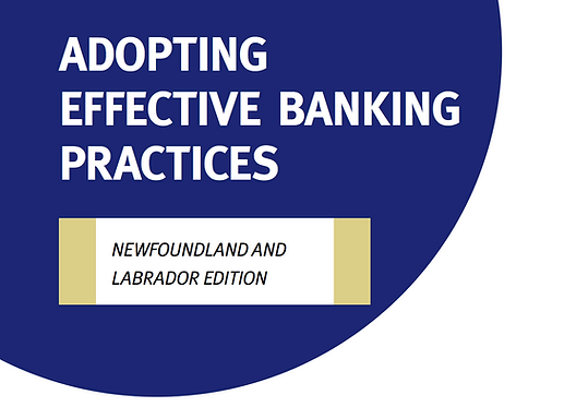 NL - Adopting Effective Banking Practices Tool