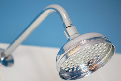 Pagham Shower Head