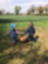 picnic x.jpg