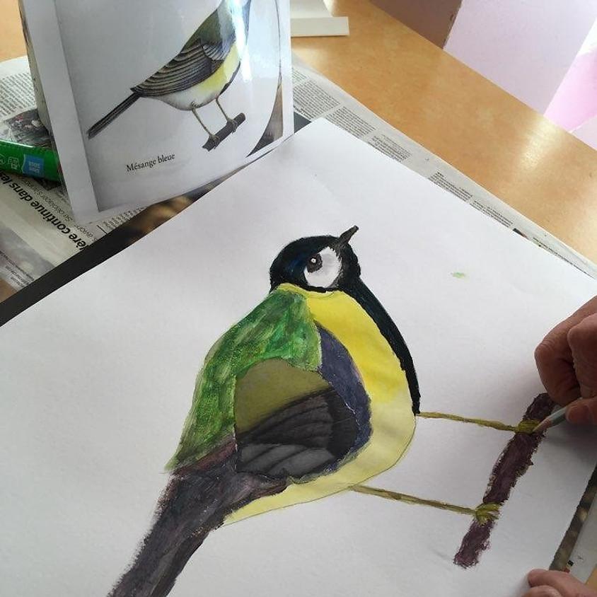 Peindre les oiseaux d'ici et d'ailleurs