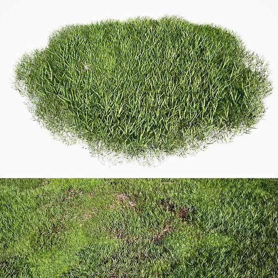 dviz Grass 05