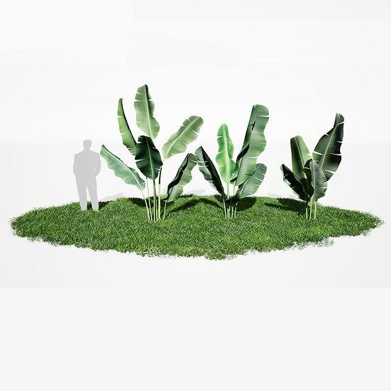 dviz Plant 11