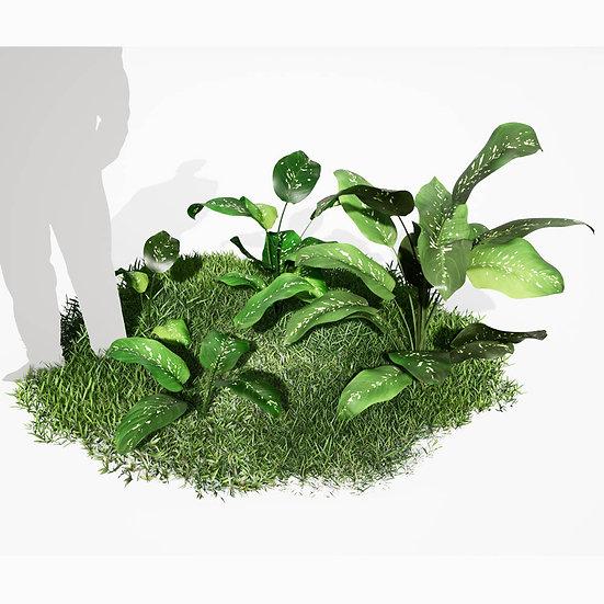dviz Plant 03