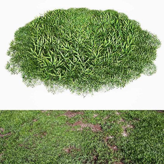dviz Grass 08