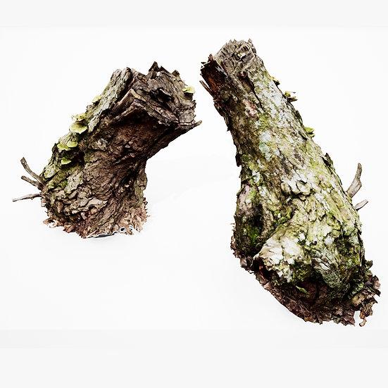 dviz Stump 15