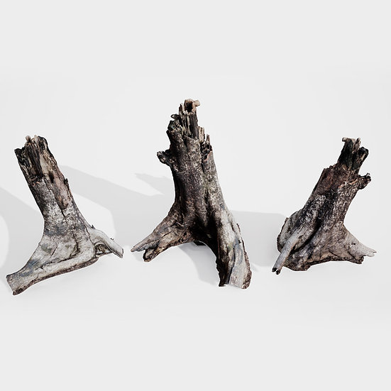dviz Stump 03