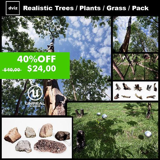Realistic Eukaliptus Tree Pack