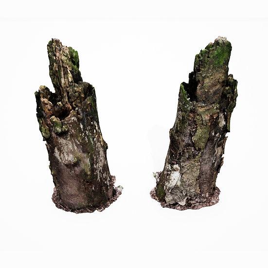 dviz Stump 12