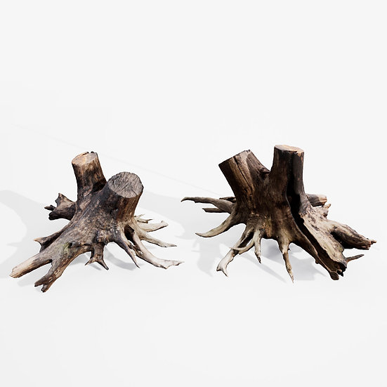 dviz Stump 04