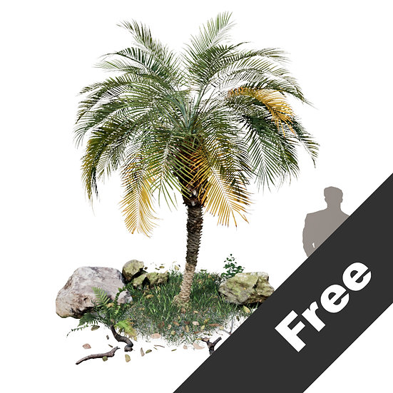 Free Sample Of the Palm Tree Pack