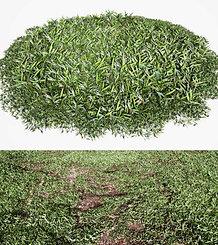 dviz Grass 03