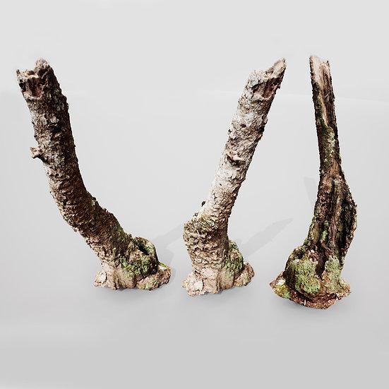 dviz Stump 16