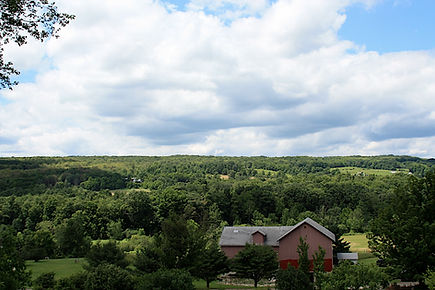 Finger Lakes Wine Country B&B