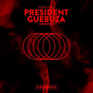President Guebuza