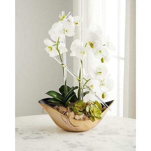 Cambridge Orchid Arrangement