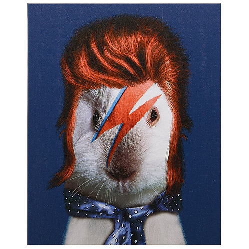Glam Rock (Pets Rock Collection)