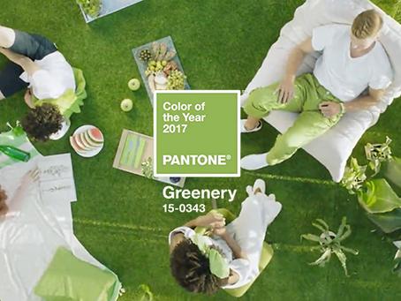 2017 的 Pantone Color 難駕馭?看完 Pantone 影片發現草木綠 Greenery 無處不在