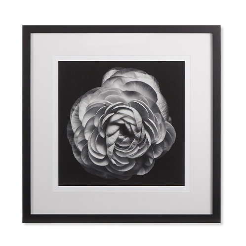 Black Blossom B (Kelly Hoppen Collection)