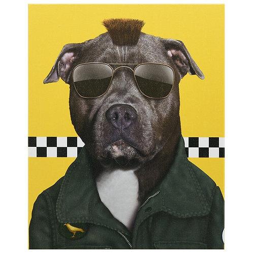Cabbie (Pets Rock Collection)