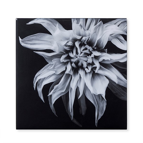 Black & White Flower - Epoxy / F (Kelly Hoppen Collection)