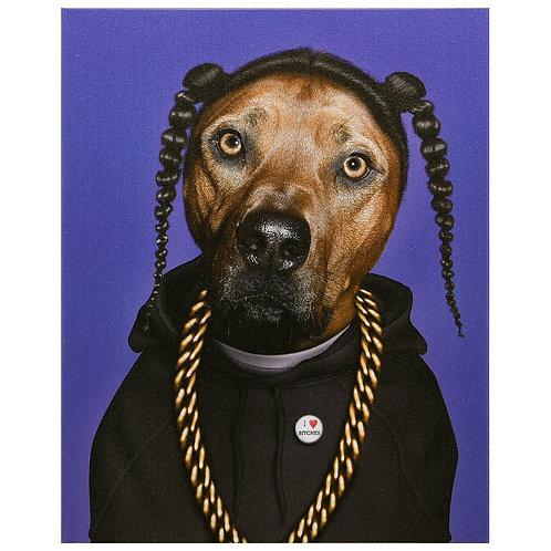 Rap (Pets Rock Collection)