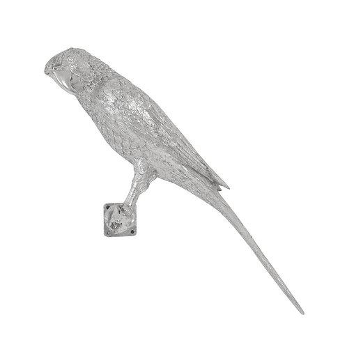 Parrot Looking Left