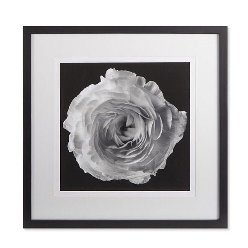 Black Blossom A (Kelly Hoppen Collection)