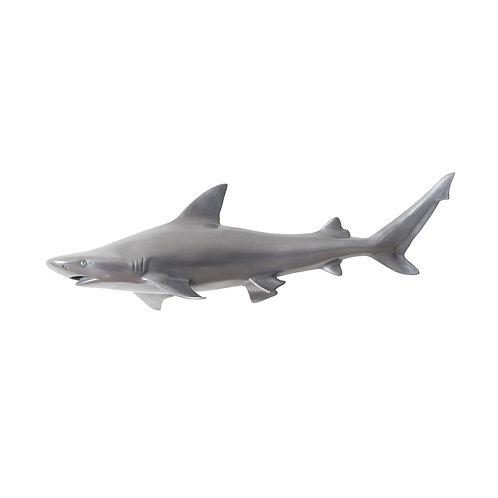 Black Tip Reef Shark (More Options)
