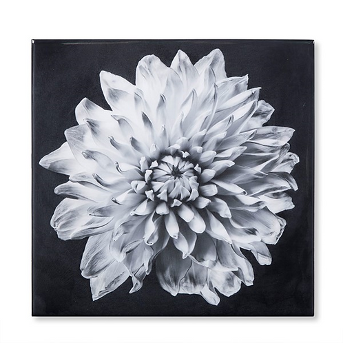 Black & White Flower - Epoxy / C (Kelly Hoppen Collection)